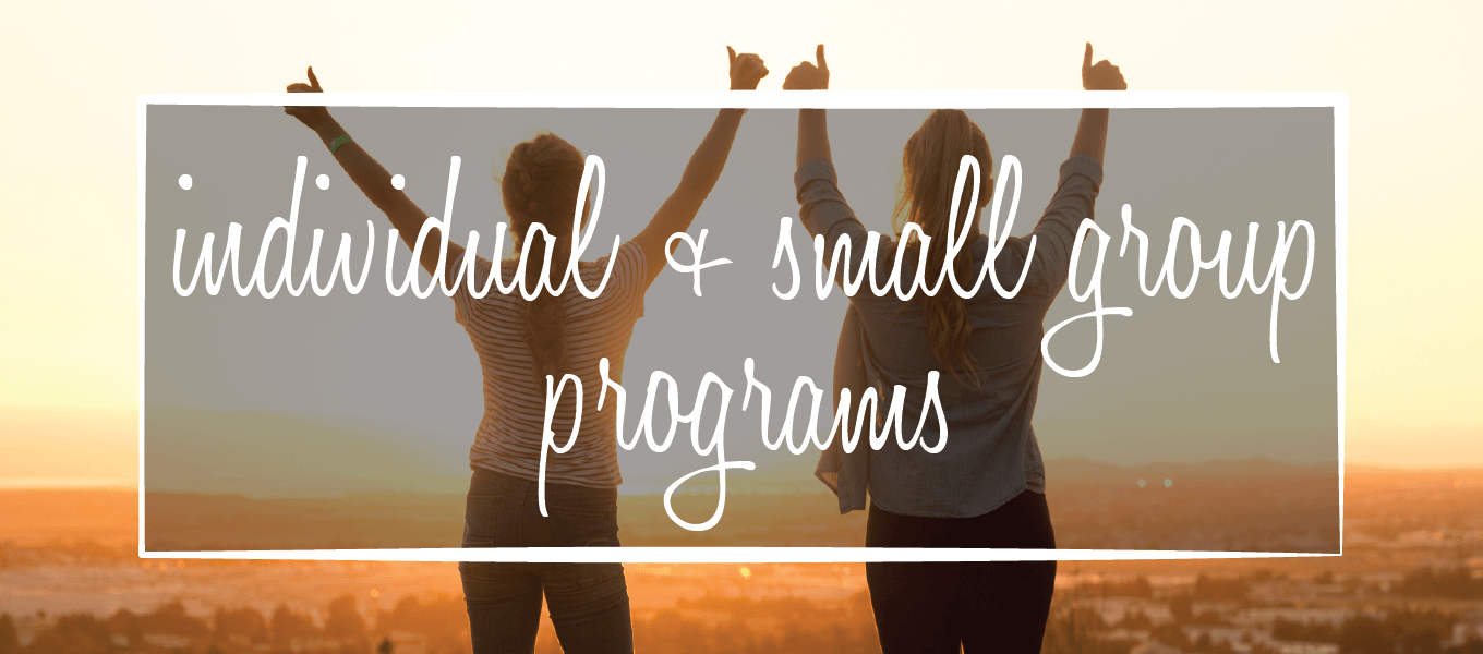 Image says: Individual + small group programs